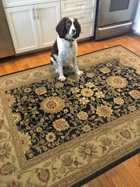 Brown and black floral area rug Point Pleasant Beach, 08742
