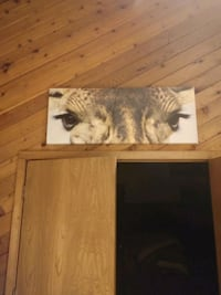 Canvas of Giraffe eyes. More like a poster