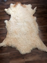 Sheep skin real new