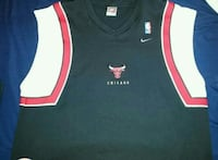 BrandNew!!!Team Nike Chicago Bulls Official Jersey St. Catharines, L2R 1N9