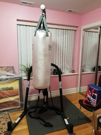 Everlast boxing bag and tower