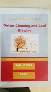 Gutter cleaning and leaf blowing Osceola, 46561