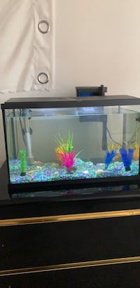 Fish tank 10 gallon last month bough will give pump too  Anmore