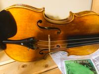 New violin maestro copy Guarneri Evah pirazzi strings Sterling