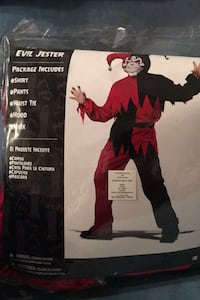 Evil Jester Costume, comes with all you see in the picture  Bear, 19701