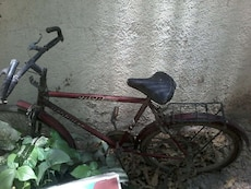 This is oldest model of cycle