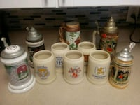 Stein and Beer Mug Collection Charlotte