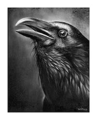 Raven charcoal drawing  Beaumont, T4X 1C6