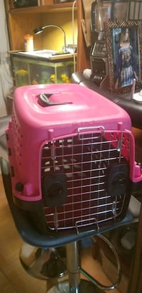 pink and black pet carrier Brooklyn, 11235