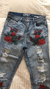 Blue denim jeans and red embroidery flowers