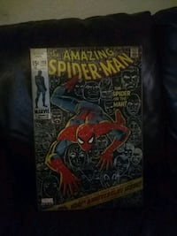 Marvel Comics Group The Amazing Spider-Man comic b Dallas
