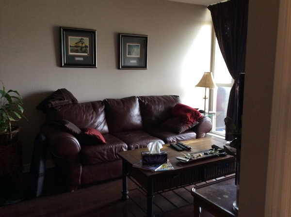 Soft brown large leather couch and will negotiate