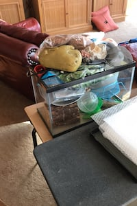 Terrarium and stand with stuff