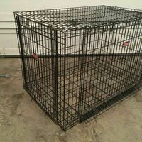 Small Dog Crate Springfield, 22151