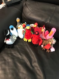 Vintage Beanie Babies (Birds Edition) Richmond, V6Y 0A7