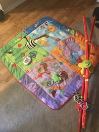 baby's green and blue activity gym Kirkland, 98034