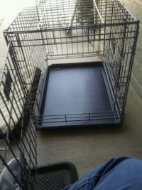 Dog crate 3 door with pad Colorado Springs, 80911