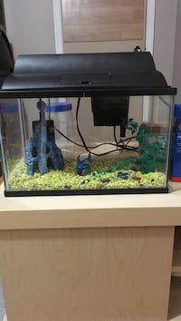12 litre fish tank with pump and accessories