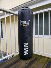 Everlast 80lbs boxing bag MINT ASAP Coquitlam, V3K 3G8
