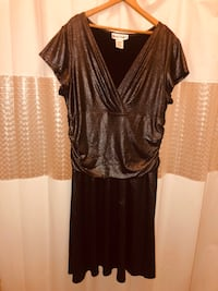 Ronnie Nicole Metallic Dress size 16 W