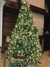 12 foot Christmas tree West Kendall