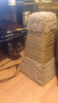 Small Cat Scratch Post Vancouver, V5R 4N1