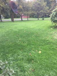 Lawn mowing outside cleaning Rockland and area Clarence-Rockland