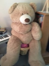 Brown and white bear plush toy Perry Hall, 21128