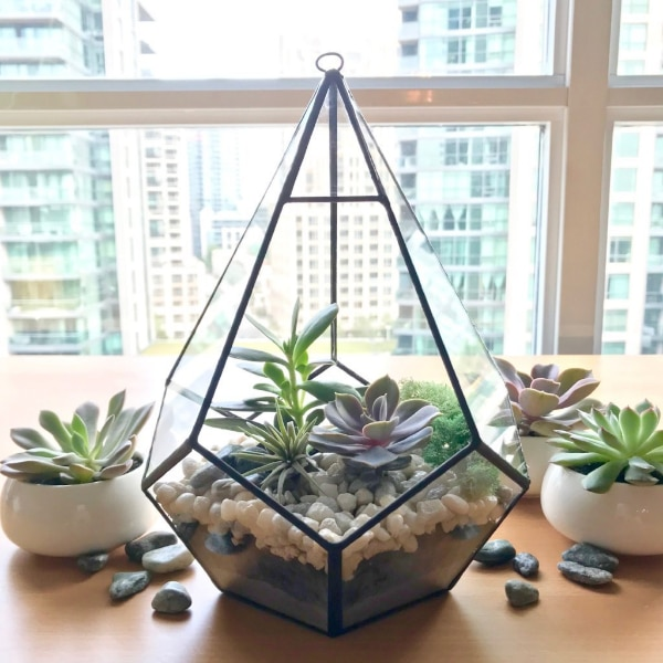 Used Teardrop Terrarium Diy Kit For Sale In Toronto Letgo