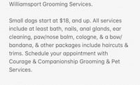 Dog grooming Jersey Shore, 17740