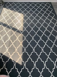 Grey and White Large Area Rug Oxon Hill, 20745