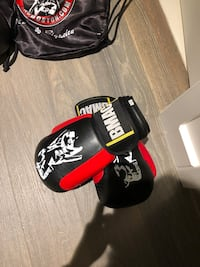 12 ounce boxing gloves, brand new Somerville, 02145