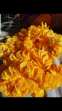 Orange Flowers VANCOUVER