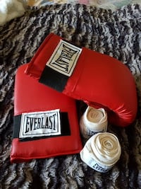 Everlast Boxing Gloves. Like new  Mississauga, L5W 1B7