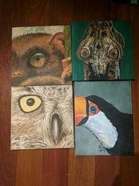 Animal Collection (Paintings)