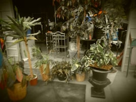 LOT OF ARTIFICIAL TREES AND PLANTS WITH PLANTER