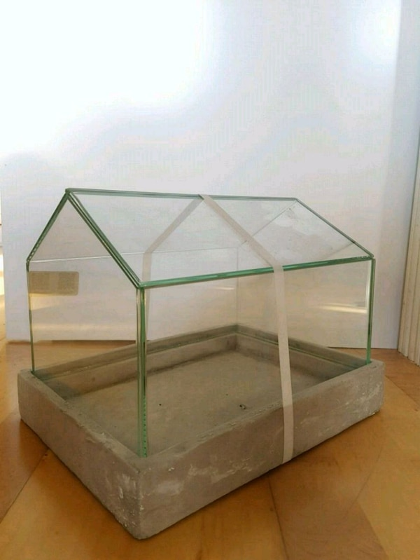 Tremendous Enclosed Glass Terrarium For Plants Download Free Architecture Designs Scobabritishbridgeorg
