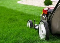 Lawn Mowing / Handy Man Oak Lawn