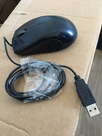Exper Mouse