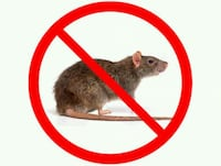 RODENT REMOVAL AND SEAL UP Albany