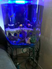 Fish tank and stand. Citrus Heights, 95610