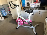 white and red stationary bike Brampton, L6X 0X8