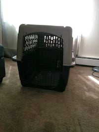 black and gray pet carrier Thornton, 80260