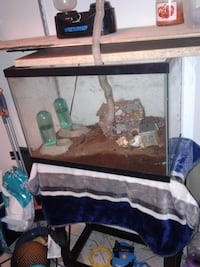20 gallon Fish /hermit crab Tank with stand  ; Takoma Park, 20912