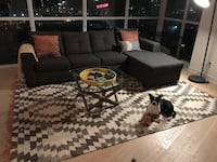 Pull out/sectional couch