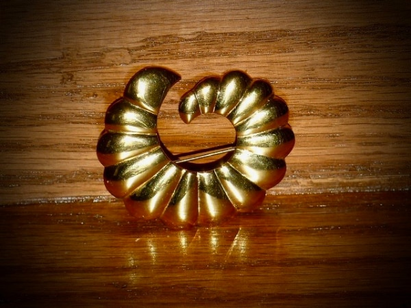 "Gold Colored Cornucopia Shell 2"" Pin"