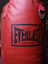 red and black Everlast heavy bag