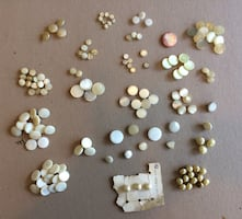 Vintage Mother of Pearl Shank Buttons