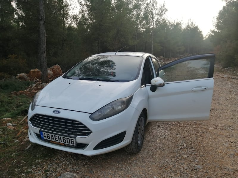 2013 Ford Fiesta YENİ 1.25I 82PS TREND 1