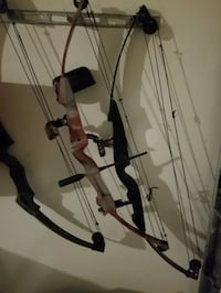 3 Compound Bows